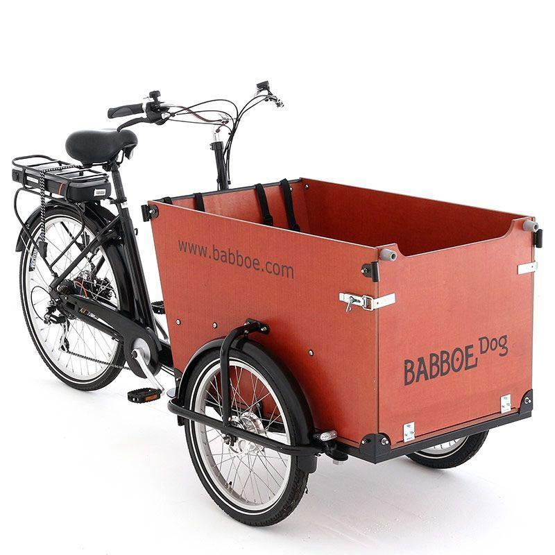 Babboe dog-E leasen | Friesland Lease