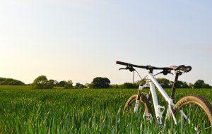 Unisex_Bike_Leasefiets